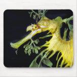 Dragón frondoso del mar tapete de raton