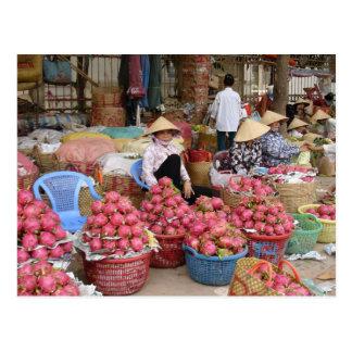 Dragon Fruit for Sale Postcard