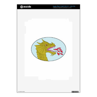 Dragon Head Breathing Fire Oval Drawing Decals For iPad 3