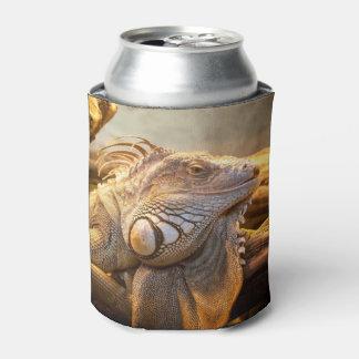 Dragon Iguana name Can Cooler