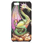 dragon iPhone 5C case