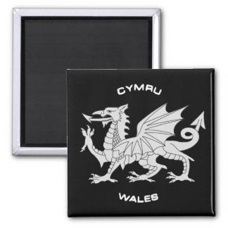 Dragon of Wales (Cymru)in Black and Grey Magnets