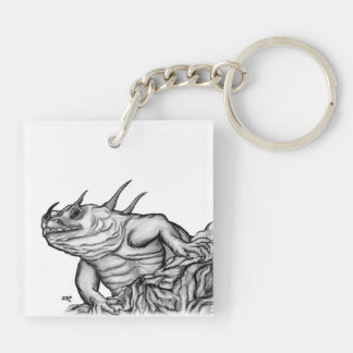 Dragon on the Rock Square Acrylic Key Chains