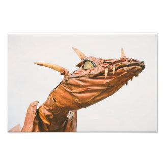 Dragón Impresiones Fotograficas