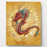 Dragón Placas Para Mostrar