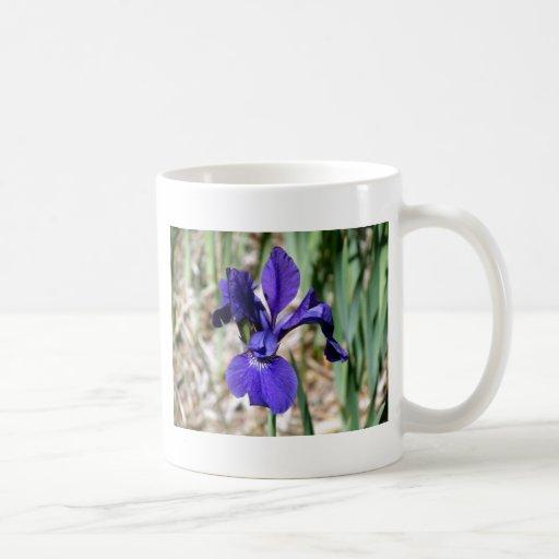 Dragón rápido de la púrpura taza clásica
