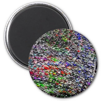 Dragon Scale 2 Inch Round Magnet