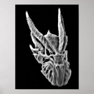 Dragon Skull X-Ray Print