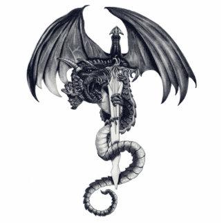 Dragon & Sword Photo Sculpture