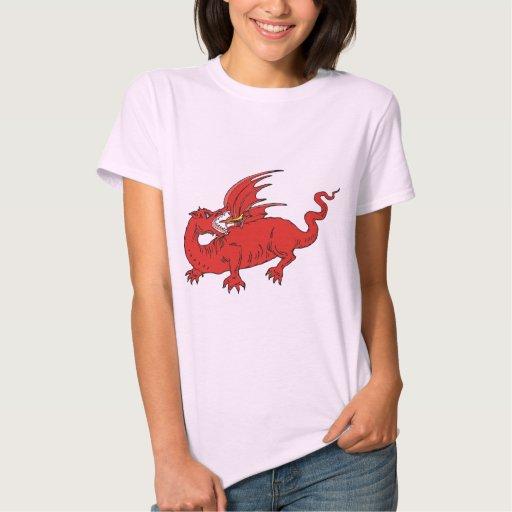 Dragon Warrior 30 Shirts
