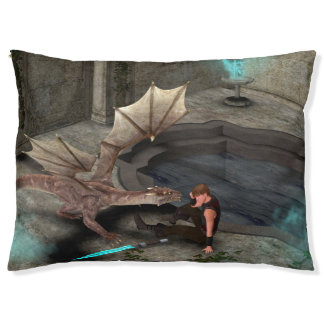 Dragon with his companion large dog bed