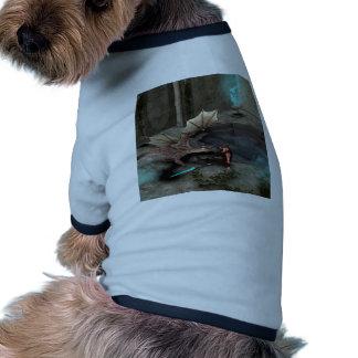 Dragon with his companion dog clothes