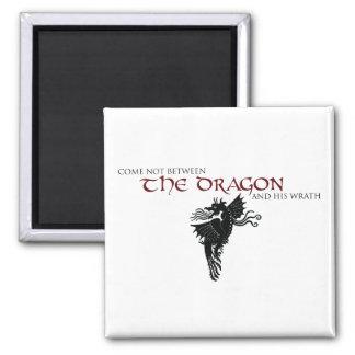 Dragon Wrath Magnet