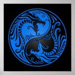 Dragones azules y negros de Yin Yang Poster