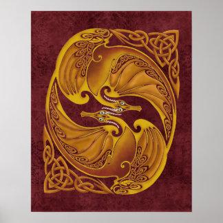 Dragones célticos ornamentales póster