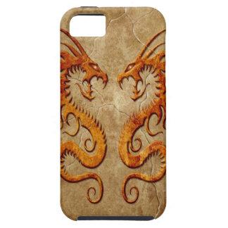 Dragones gemelos de piedra iPhone 5 fundas