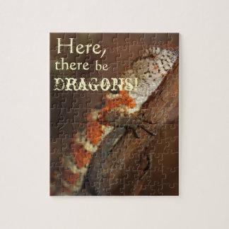 Dragones, lagarto anaranjado rompecabezas con fotos