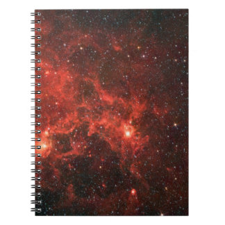 Dragonfish Nebula Notebook