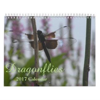 Dragonflies 2017 Calendar Medium Calendar