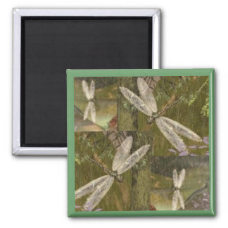 Dragonflies 2 Inch Square Magnet