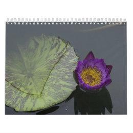 Dragonflies and water lilies calendar