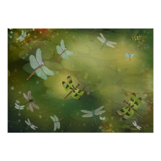 Dragonflies and Water Lillies Art Print