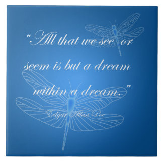 """Dragonflies Dream Dragonfly Quote 20"""" Tile"""