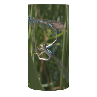 Dragonflies in love (damselfly's) flameless candle