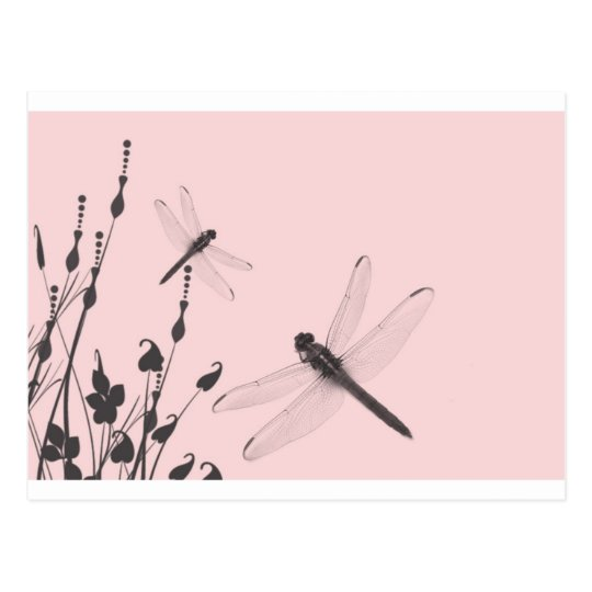 Dragonflies in the Grass Postcard
