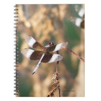 Dragonflies Notebook