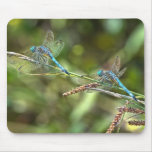 Dragonflies on Branch Mousepad