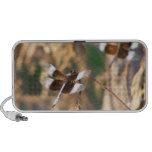 Dragonflies PC Speakers
