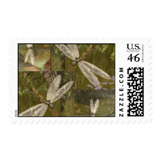 Dragonflies Postage Stamps