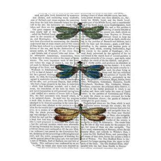 Dragonflies Print 2 Rectangular Photo Magnet