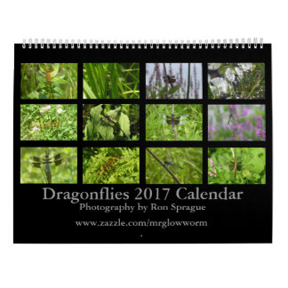 Dragonflies - Two Page, Large, White Calendar
