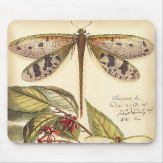 Dragonflies with Leaves and Fruit Mouse Pad