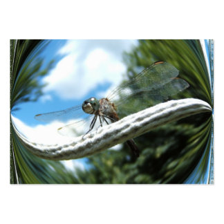 Dragonfly 182 ~ ATC Large Business Card