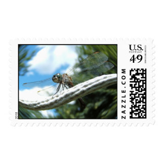 Dragonfly 182 ~ Stamp
