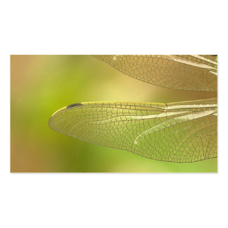 dragonfly-348433  dragonfly insect animal wing sum Double-Sided standard business cards (Pack of 100)