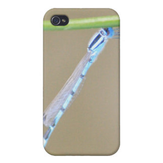 Dragonfly 4/4s iPhone 4/4S cover