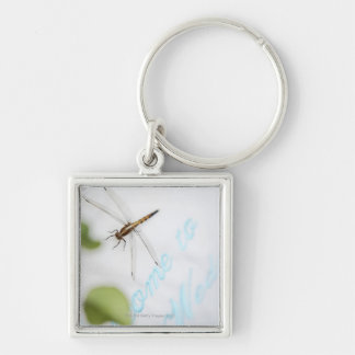 Dragonfly 4 Silver-Colored square keychain
