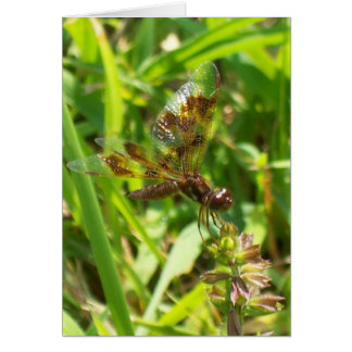 Dragonfly 5601 - Vertical Card