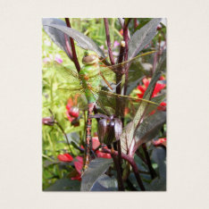 Dragonfly 59 ~ ATC Business Card at Zazzle