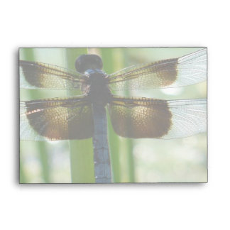 Dragonfly A6 Envelope