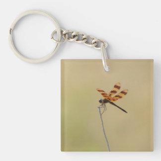 Dragonfly Acrylic Round Keychain