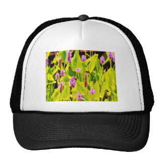 Dragonfly and Purple flowers Mesh Hats