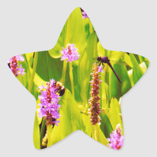 Dragonfly and Purple flowers Star Sticker