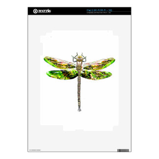 Dragonfly art and design gifts skins for iPad 2