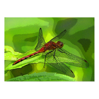 Dragonfly ATC Large Business Cards (Pack Of 100)