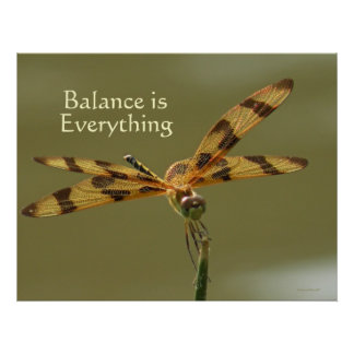 Dragonfly Balance Poster